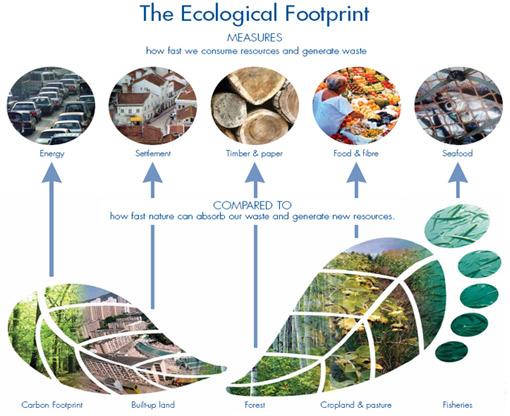 http://www.footprintnetwork.org/images/uploads/basics-overview-510.jpg