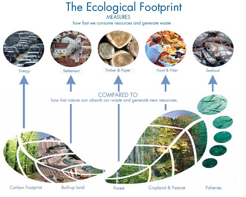 Sostenibilità ambientale e impronta ecologica