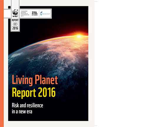 Lpr 2016 Full Report Inside Include Cover Indd