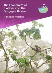 report cover Dasgupta Review abridged version
